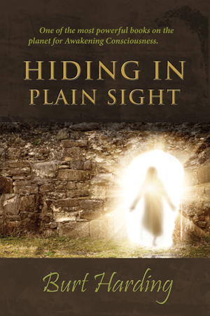 Hiding in Plain Sight by Burt Harding